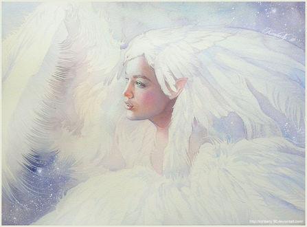 Фото Девушка - эльфийка с белой птицей на голове, by kimberly80