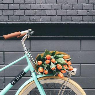 Фото Букет тюльпанов на велосипеде у стены
