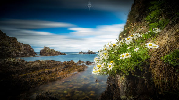 ���� �������, �������� �� ������ Portknockie in Morayshire, Scotland / Portknockie � Morayshire, ���������
