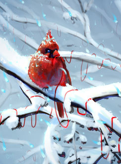 Фото Красный кардинал сидит на заснеженной ветке дерева, художник Александра Кожанова