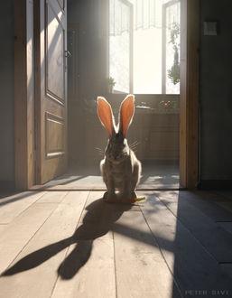 Фото Кролик сидит с морковкой на полу, by Peter Sivi