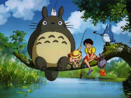 Фото Кадр из аниме Tonari no Totoro / Мой сосед Тоторо