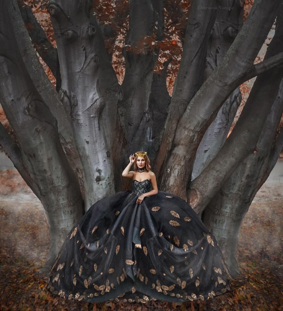 знакомство с листьями деревьев