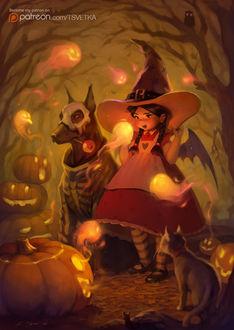 Фото Маленькая ведьмочка, пес в карнавальном наряде, черный кот и мышка в ночном лесу в окружении огненных призраков и хэллоуиновских тыкв, by Tsvetka