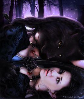 Фото Девушка оборотень, с головой черного волка, со слезами на глазах, с пробитой стрелой грудью, склонилась над зеркалом, в котором виден ее настоящий облик, by ChristabelleLAmort