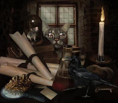 Фото Полосатый кот в очках сидит за столом, на котором лежит стопка книг, а на них стоит стекляный купол, внутри которого мышь, на столе сидит ворон с монетой в клюве, by kimsol