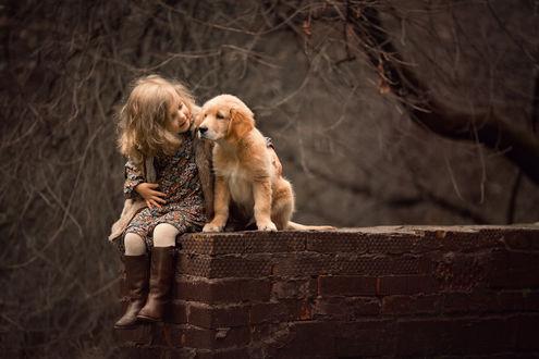 Фото Девочка обнимает щенка золотого ретривера, фотограф Зарх Юлия