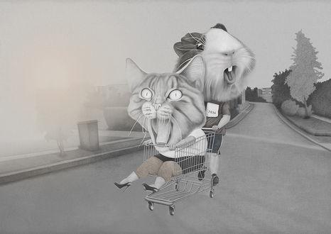 Фото Веселая морская свинка катит по дороге тележку, с ошалевшей от радости котшкой, by Helena Frank