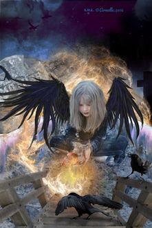 Фото Магия девушки Ангела с черными крыльями над деревянным мостиком с черной вороной, by PedroDeElizald