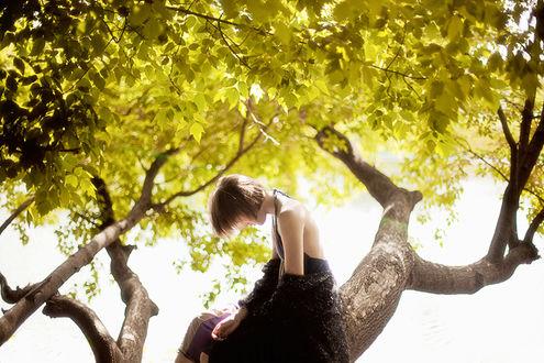Фото Девушка сидит на дереве