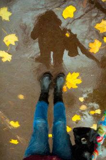 Фото Работа осенняя прогулка, фотограф Дмитрий Счеславский