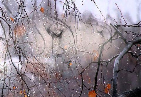 Фото Профиль девушки на фоне осеннего пейзажа с каплями дождя