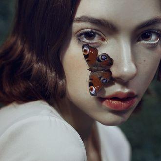 Фото Девушка с бабочкой на лице, фотограф Marta Bevacqua