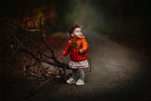 Фото Девочка стоит с листочком в руке у сломанных веток дерева, фотограф Светлана Беляева