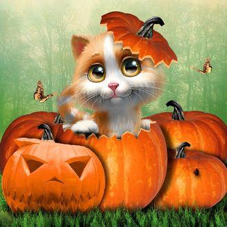 ���� ����� ����� �� ����� �� ���� ����, � ����� �� ��� ����� ����-����� �������, Halloween Kitty / �������� Kitty, by tinca2