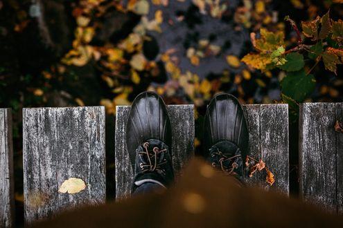 Фото Ноги в черной обуви на мостике над водой с осенними листьями, фотограф Gabriela Tulian