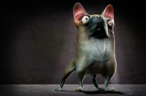 Фото Прикольный пес на темном фоне, by thedoberman