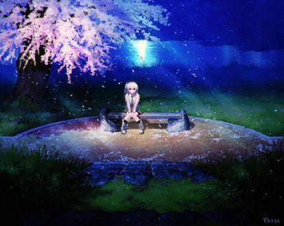 Фото Девочка сидит на лавочке под цветущей сакурой ночью