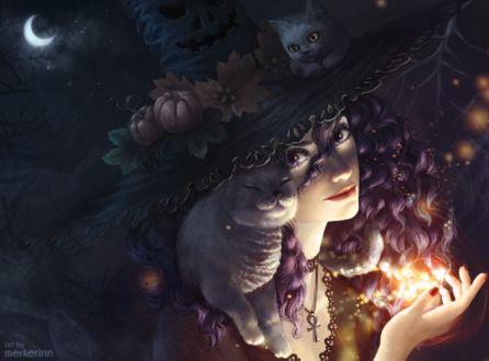 Фото Ведьма и две кошки в ночь на Хэллоуин, by merkerinn