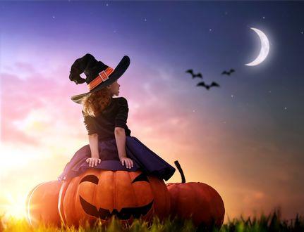 Фото Девочка в шляпе ведьмы сидит на тыкве и смотрит на месяц в небе и летучих мышей