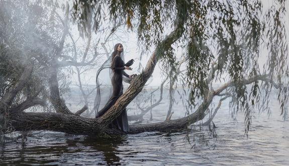 Фото Девушка с вороном в руке стоит у воды, фотограф Ирина Джуль