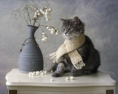 Фото Кот в вязаном шарфике на шее, сидит на столике, на котором стоит ваза с цветами, by Daykiney
