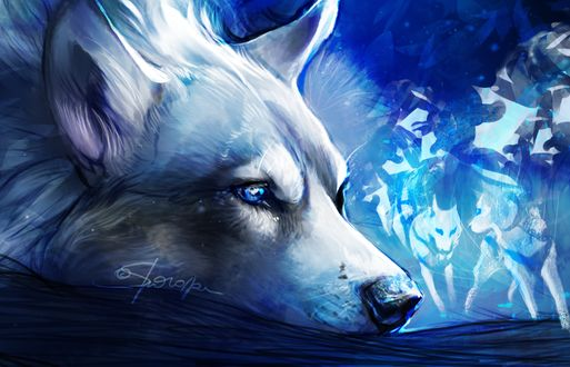 Фото Грустный белый волк, by Sharaiza