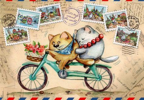 Фото Котик и кошечка путешествуют на велосипеде на фоне марок разных стран, иллюстратор Кристина Крокус