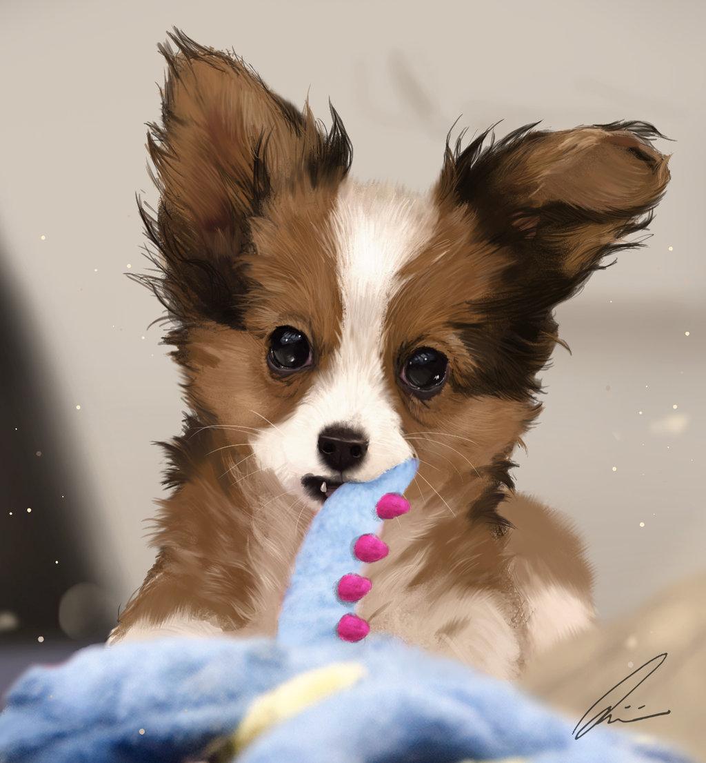 что картинки щенки милые и красивые рисунки достаточно быстро