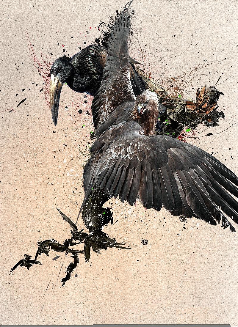 подстреленная птица картинки простое наблюдение окружающим