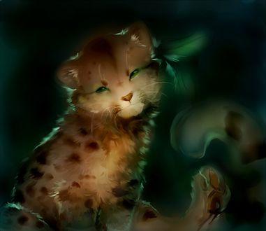Фото Симпатичный детеныш леопарда сидит на темном фоне, by tamberella