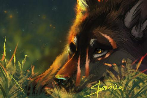Фото Грустный волк на траве, by Sharaiza