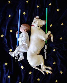 Фото Малыш и собака спят обнимая световые мечи на звездной простыне