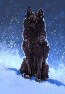 Фото Волк с голубыми глазами сидит на снегу, by Sharaiza