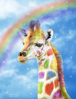 Фото Разноцветный жираф на фоне неба и радуги, by Carol Cavalaris