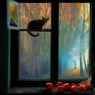 Фото На подоконнике лежит айва, а на форточке сидит кошка, за окном идет дождь, фотограф Igor Zenin