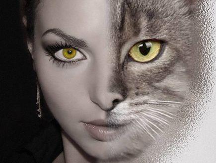 Фото Лицо девушки и кошки с желтыми глазами
