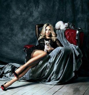 Фото Девушка сидит в кресле с двумя кошками породы сфинкс, by Andrey Yakovlev