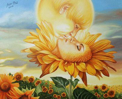 Фото Поцелуй солнца и цветка подсолнуха, by Лиза Рэй