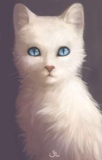 Фото Белая кошечка с голубыми глазами, by sforcia