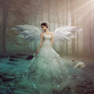 Фото Девушка - ангел стоит в воде поодаль от лебедя, by theclassica