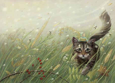 Фото Мальчик сидит сверху на большой кошке, идущей среди высокой травы, by Arta Nika