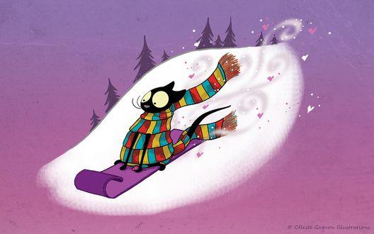 Фото Кот в полосатом шарфе едет с горки на ледянке, by Celeste Gagnon