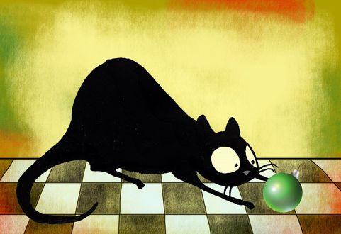 Фото Кот смотрит на елочный шарик, by Celeste Gagnon