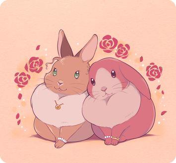 Фото Две гламурных крольчихи, by 井口病院