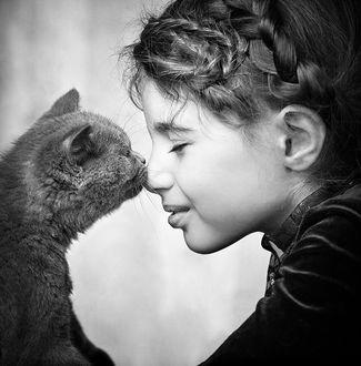 Фото Девочка и ее целующая кошка, фотограф Slavina Bahchevanova