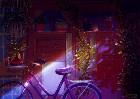 Фото Велосипед около дома, by RE013