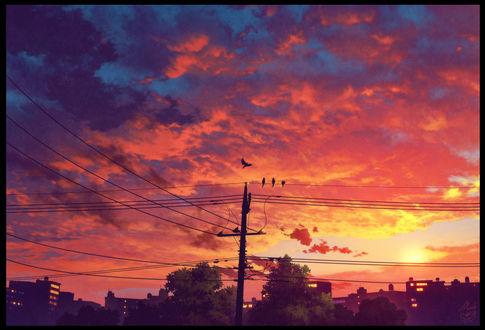 Фото Линии электропередач под розовым облачным небом