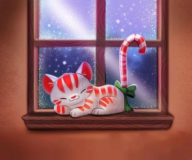 Фото Белый кот в красную полоску спит на подоконнике окна, by Cryptid-Creations