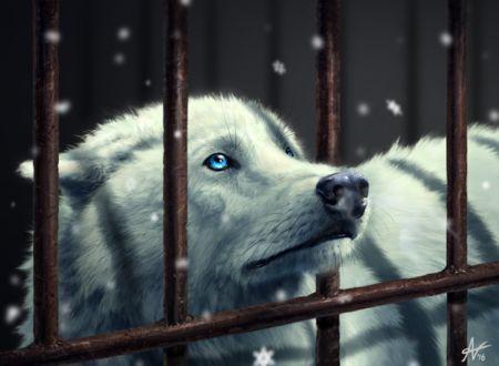 Фото Белый волк за решеткой, by Alyssa Veysey